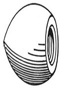 "Camp ZPC3 Zinc Acorn Nut 3-1/16"" Long"