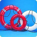 """Dock Edge 24"""" Life Ring Buoy"""