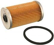 Fram CG20 Gasoline Filter