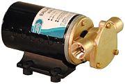 ITT Jabsco 182201127 12VDC Wakeboard & Ski Boat Ballast Pump