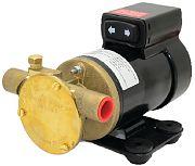 Johnson Pump 10-24760-03 Pump, Oil Change, F3B 19, 12 Volt
