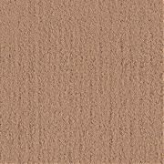 Seaside 6ft Carpeting Khaki
